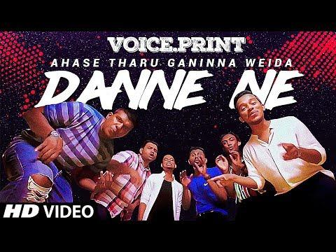 Danne Ne - Voice Print